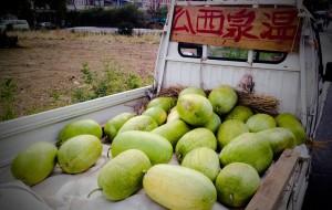 四重溪的西瓜